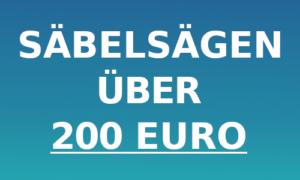 Säbelsäge über 200 Euro